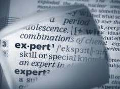expert-dictionary-2